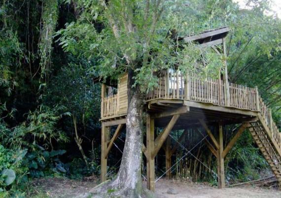Cabane perchée (coté escalier)